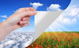 概念季节性分隔的白色 免版税库存图片