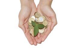 概念庄园房子货币实际反映 女孩的手有生长从堆的绿色树的硬币 免版税库存图片