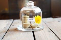 概念庄园房子货币实际反映 免版税库存照片