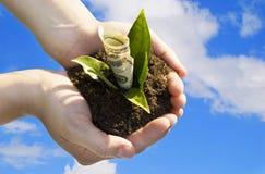 概念性财务增长图象查出的白色 免版税图库摄影