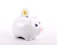 概念性Bitcoin在存钱罐中 免版税库存照片