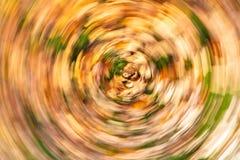 概念打旋的秋叶 库存照片
