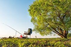 概念渔是在露天的爱好 在湖的钓鱼竿和钓鱼椅子支持在大绿色树下在清楚的温暖的天 免版税图库摄影