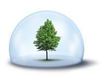 概念环境保护 免版税库存照片