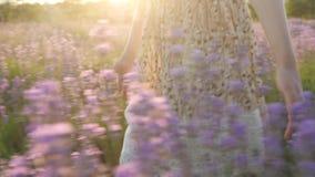 概念秀丽和健康 特写镜头身体局部手小女孩 夏天礼服通过在日落的柔和淡紫色领域走和 股票录像