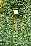 概念绿灯 库存图片