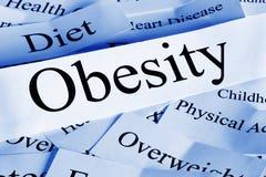 概念肥胖病 库存照片