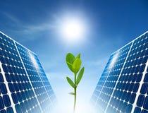 概念能源太阳绿色的面板 库存图片