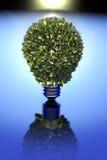 概念能源绿色 免版税图库摄影