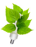 概念能源绿色 库存图片