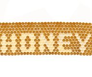 概念蜂蜜 库存照片