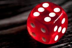 概念运气-把赌博在黑暗的木背景切成小方块 图库摄影