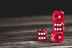 概念运气-把赌博在黑暗的木背景切成小方块 免版税库存图片