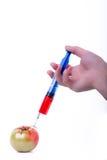 概念食物基因修改注射器蕃茄 库存照片