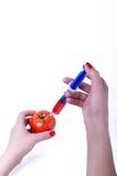 概念食物基因修改注射器蕃茄 免版税库存图片