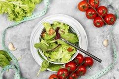 概念饮食食物 饮食混杂的蔬菜沙拉mesclun, m 库存照片