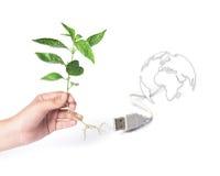 概念去绿色 除世界之外 免版税图库摄影