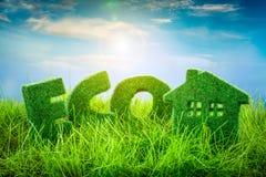 概念eco和平鸽子 免版税图库摄影