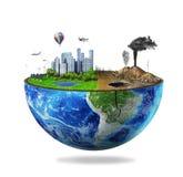 概念eco和平鸽子 免版税库存图片