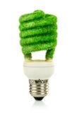 概念Eco电灯泡 免版税库存照片