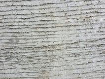 概略的具体水泥纹理路背景 库存照片