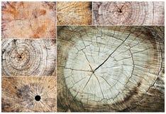 概略的木裁减纹理和镇压样式的汇集 免版税库存照片
