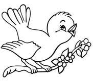 概述的birdy 免版税库存图片