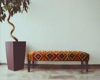 榕属树在沙发旁边的客厅 库存照片