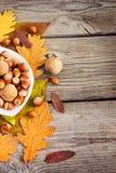 榛子和核桃在一个碗在秋叶背景  库存照片