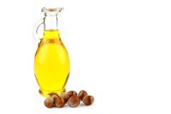 榛子油和榛子在白色背景 免版税库存照片
