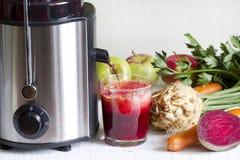 榨汁器和汁液用新鲜的水果和蔬菜 免版税库存照片