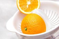 榨汁器用桔子 免版税图库摄影