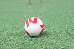 槌球 免版税库存照片
