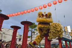 槟榔岛马来西亚中国新的肯定,狮子danse 免版税图库摄影