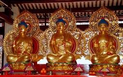 槟榔岛,马来西亚:三镀金了Buddhas在中国寺庙 免版税图库摄影