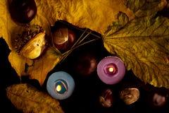 槭树叶子、栗子和蜡烛在黑背景 库存照片