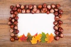 从槭树叶子和栗子的秋天框架 免版税库存图片