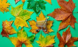 槭树叶子和购物车 图库摄影
