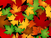 槭树叶子秋天无缝的样式 免版税库存照片