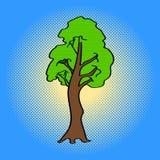 槭树流行艺术传染媒介例证 库存图片