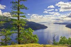 槭树海湾风景看法在温哥华岛,不列颠哥伦比亚省 免版税图库摄影