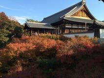 槭树的秋天颜色在tofukuji寺庙前面的在京都 免版税图库摄影