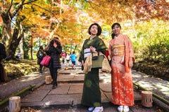 槭树的红色叶子在秋天日本 免版税库存图片