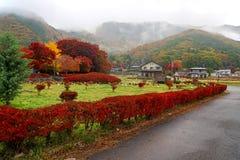 槭树走廊和地方房子在Kawaguchiko 免版税库存照片