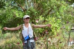 槭树,叶子, Phukradueng, Loei 库存图片
