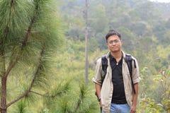 槭树,叶子, Phukradueng, Loei 免版税图库摄影