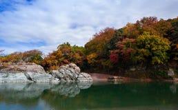 槭树(Koyo)季节在日本 免版税库存照片