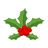 槲寄生 传统圣诞节植物 假日红色误码率 皇族释放例证