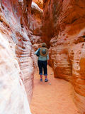 槽孔峡谷远足 库存图片
