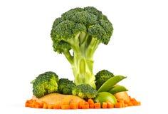 模型结构树蔬菜 免版税库存照片